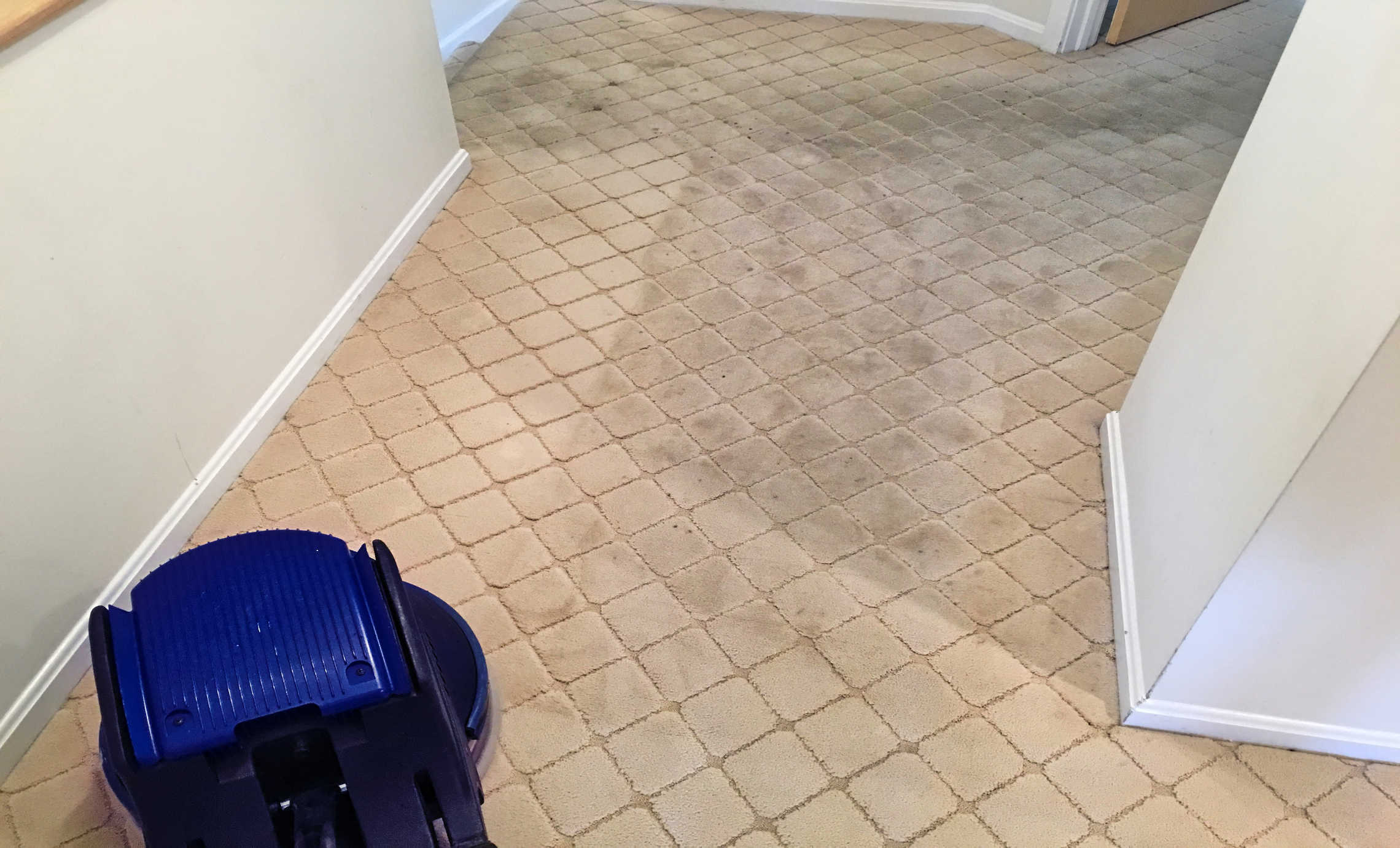 Heavily soiled carpet scrubbing for Sanitize 4 Serenity